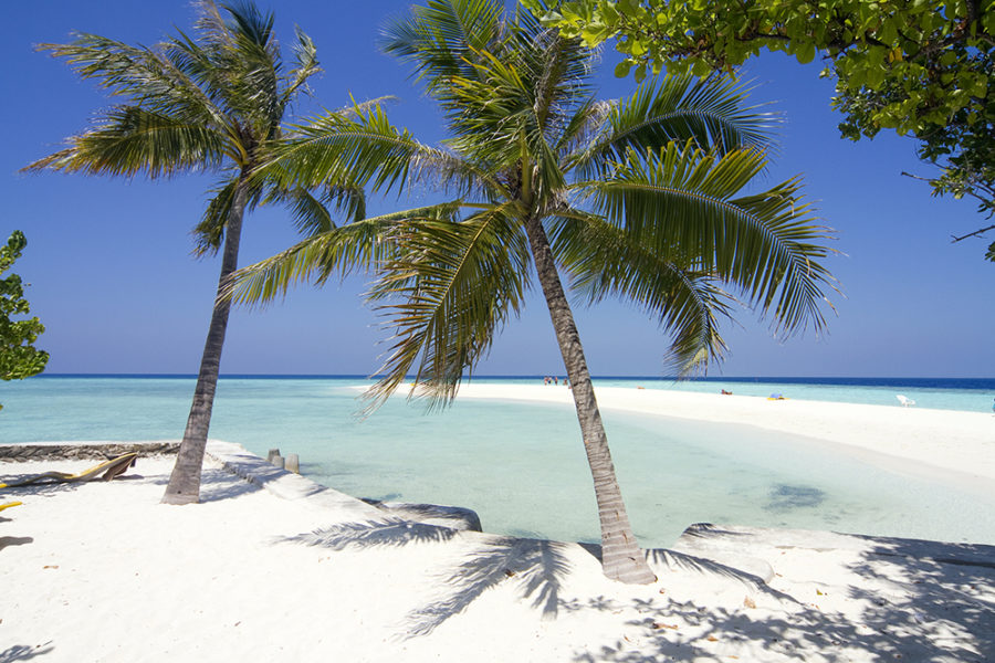 All about the Maldives